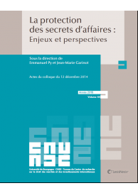 La protection des secrets d'affaires : enjeux et perspectives